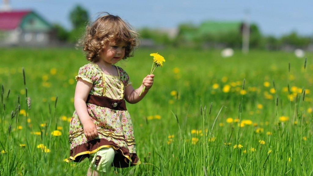 child-bring-flowers-hd-wallpaper